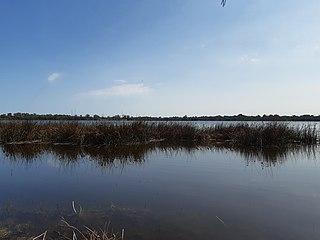 Yangebup Lake Lake in Perth, Western Australia