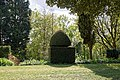 Yew topiary at Myddelton House garden, Enfield, London.jpg