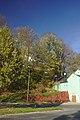 Zábřeh, stromy v Havlíčkově ulici.jpg