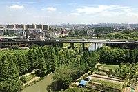 Zhejiang Hangzhou Jianggan - Camellia IMG 8716.jpg