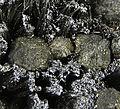 Zinkenite-Stannite-Andorite-266411.jpg