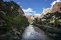 Zion National Park (15317012462).jpg