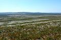 Вид с горы Даминтау в западном направлении. До горы Маяктау на горизонте расстояние примерно 8,4 км. - panoramio.jpg