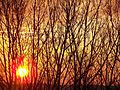 Восход - panoramio.jpg