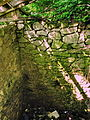 Гримайлів Руїни замку 1.jpg