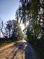 Дорога на с. Буйволівці, фото 4.jpg