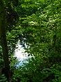 Маленькие пруды южнее Черного озера.jpg