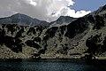 Национален парк Пирин - NP01 - локация Бандеришки езера-река Глазне No9.jpg