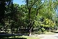 Парк імені Тараса Шевченка, Київ.jpg