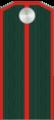 Подпоручик РОА.png