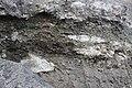 Раскопки плезиозавра 150 млн. лет. Городище. Ундоры. Ульяновская обл. Ноябрь 2013 - panoramio.jpg