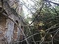 Руины межировской синагоги2.jpg
