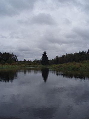 Selizharovka River - Selizharovka River
