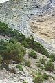 Скелі Нового світу.jpg