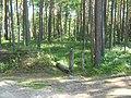 Т-образный перекрёсток. Кварталы 32, 33, 37, 38 - panoramio.jpg