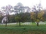 Цвинтар вояків СС Галичина в селі Ляцьке-Червоне. Меморіал воїнів.jpg