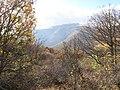 Արզականի և Մեղրաձորի արգելավայր-208.jpg