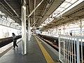二子玉川駅 - panoramio (6).jpg
