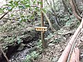 化石の滝 - panoramio.jpg