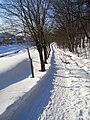 北見市 - panoramio (1).jpg