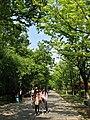 南京明孝陵景区翁仲路 - panoramio (1).jpg