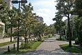 多摩ニュータウン落合地区の遊歩道120904.jpg