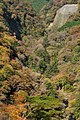 夢の大吊橋から見た九酔渓 Kyusuikei seen from the large suspension bridge of dreams - panoramio (1).jpg