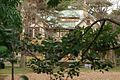 山本有三記念館 Yuzo Yamamoto Memorial Museum - panoramio.jpg
