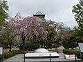 日本大阪古蹟31.jpg