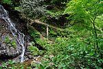 白岩の滝 - panoramio (30).jpg