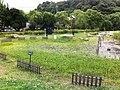 誕生池 - panoramio (1).jpg