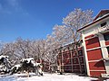 雪后初晴 - Clear Sky after a Snowfall - 2013.03 - panoramio.jpg