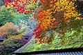 鳥居本のもみじ 京都市右京区 Toriimoto, Kyoto 2013.11.21 - panoramio.jpg