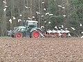 -2019-01-17 Winter work ploughing Southrepps, Norfolk (3).JPG