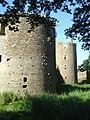 01 Château de Ranrouët.JPG