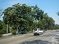 08547jfIntramuros Anda Circle Bonifacio Drive Port Area Manilafvf 01.jpg