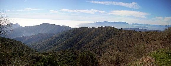 1. P.N.Montes de Málaga.jpg