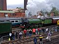 1306 Mayflower at Barrowhill (2).jpg