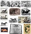 1800s-rampur-hound 1903 05.jpg