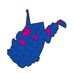 1964 West Virginia Senate election.png