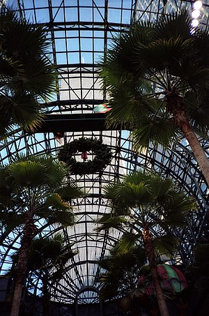 Winter Garden Atrium - View of the North Tower of the World Trade Center from the Winter Garden in December 1988