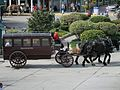 2007 Michigan Mackinac Island Grand Hotel carriage.jpg