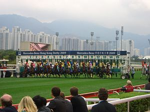 Starting gate - Horses leaving barrier stalls at the start of a Hong Kong Derby.