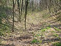 2010 04 09 10-11 árokban - panoramio.jpg