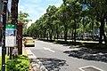 2010 07 20370 6623 Da'an District, Taipei, Renai Road, Taiwan.JPG