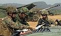 2011.4.21 한미 해병대 KITP, 연대급 연합 합동훈련 (7634201526).jpg