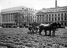 Jamie l whitten building wikipedia a department of agriculture employee uses a mule drawn tiller to plant a new lawn 1931 sciox Choice Image