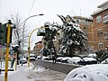 2012-02-04 After snowfall in Northern Rome 01.jpg