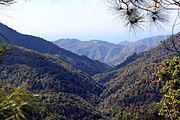 2012-02-Sierra Maestra Turquino Nationalpark Kuba 01 anagoria