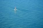 2012-05-13 Nordsee-Luftbilder DSCF8650.jpg